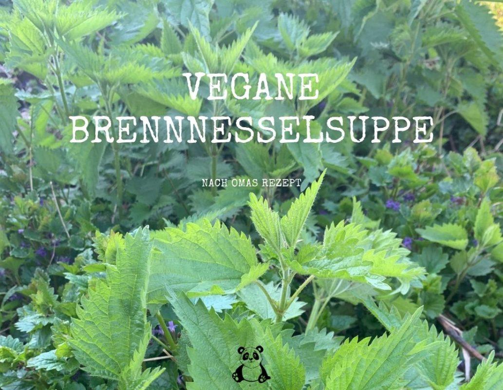 Vegane Brennnesselsuppe