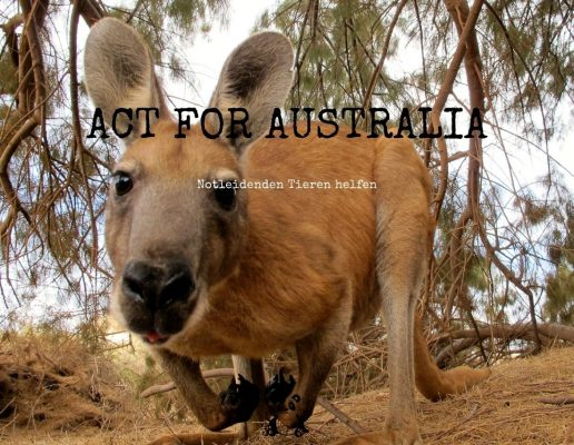 !ACT FOR AUSTRALIA!