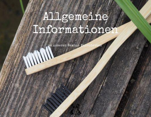 Blog-Beitraege-Allgemein-Infos-Bambus-Zahnbuersten
